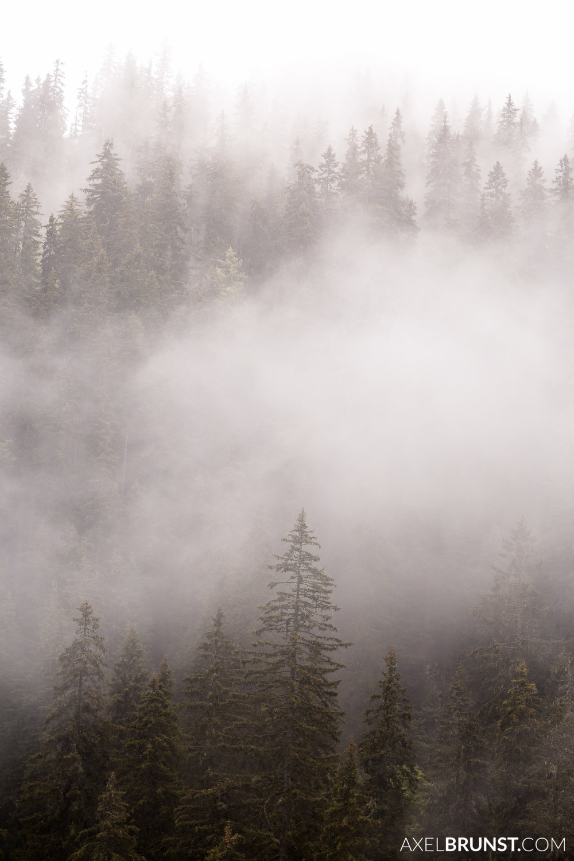 jenner-berchtesgaden-national-park-3.jpg
