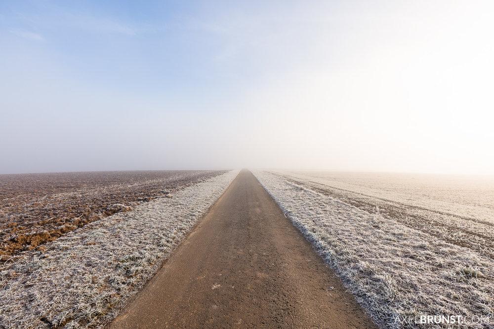 Frosty-winter-morning-Ditzingen-Germany-3.jpg