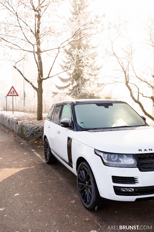 Frosty-winter-morning-Ditzingen-Germany-8.jpg