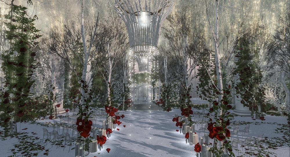 winterroses.jpg