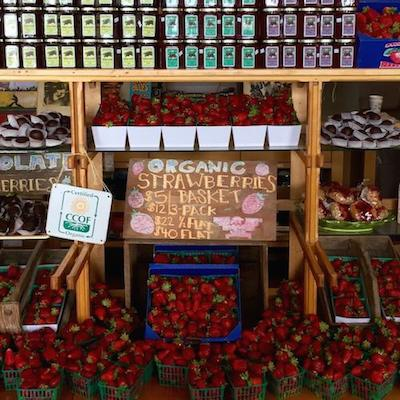 The farm stand at Swanton Berry Farms