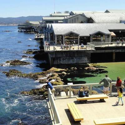 Views from the Monterey Bay Aquarium