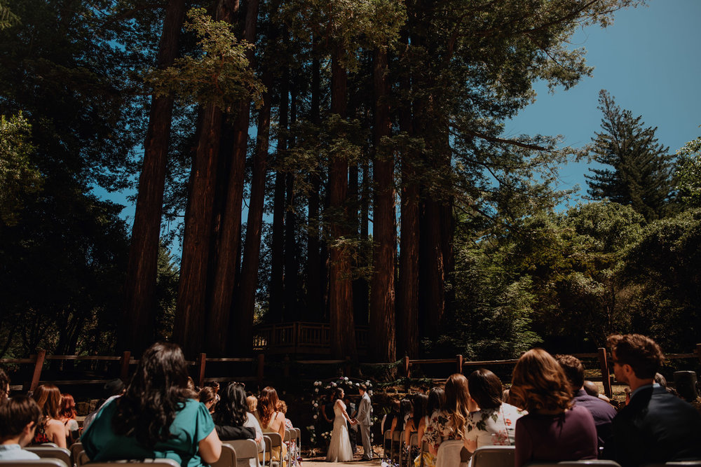 San-Jose-California-Wedding-Photographer-Arianna&Bryan-0022.jpg