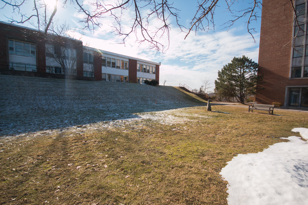 The hillside near the Annex is the current location of the outdoor biology labs.