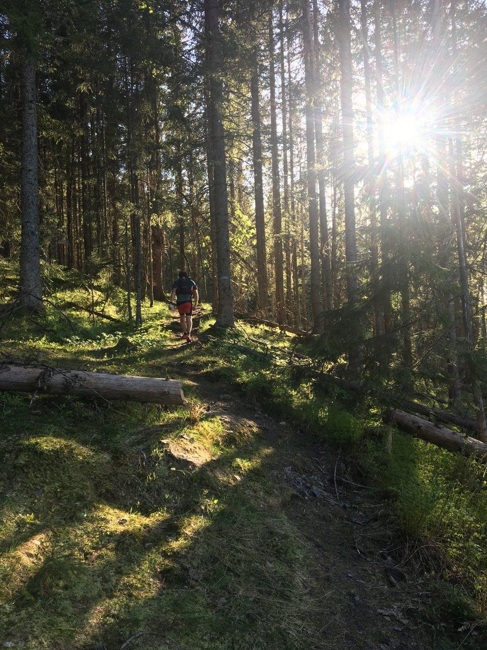 En av de mange stiperlene vi løper gjennom 🏞✨🍃🌲🌳Jeg tror Mona og Einar har kost seg masse med å stikke ut ruten til SMVE 😊