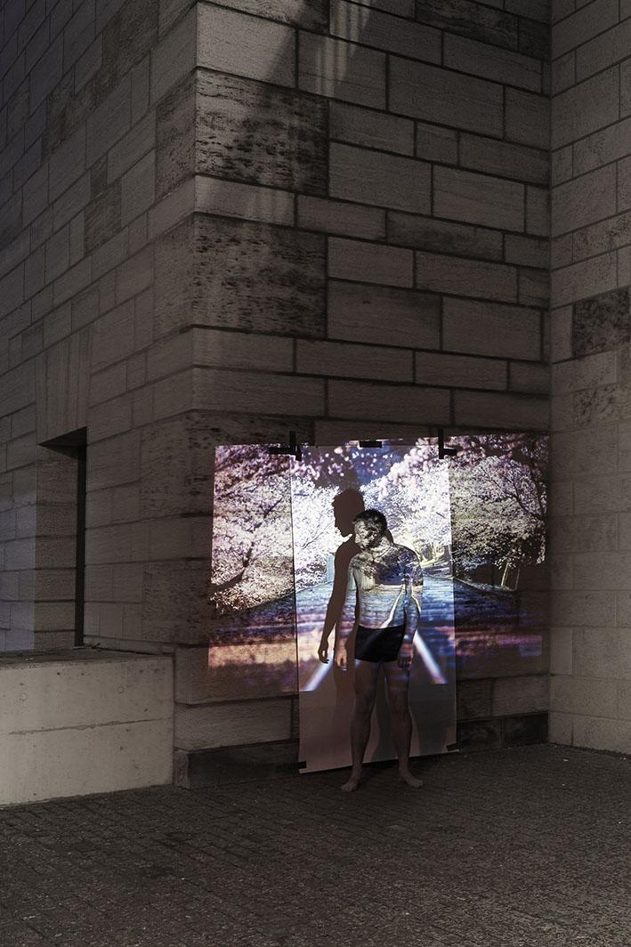 Projektion-Mann-steht-vor-angestrahlter-Leinwand-an-Steinwand-vor-Kirschblueten