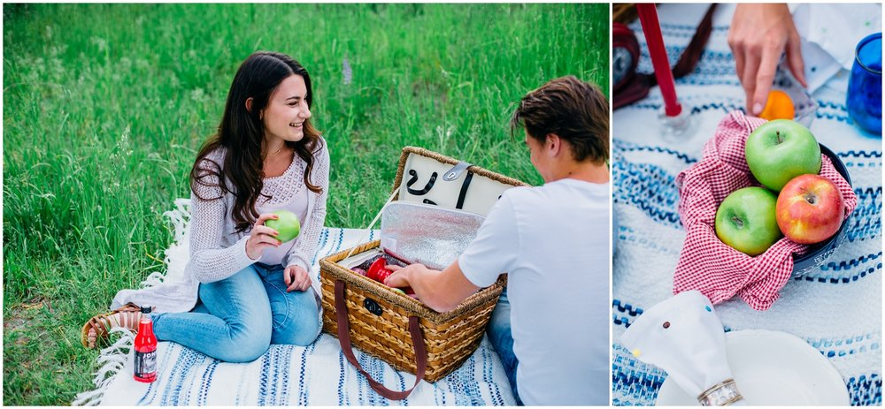 picnic-engagements-ririe-idaho-colorado-wyoming-wedding-photographer_0476.jpg