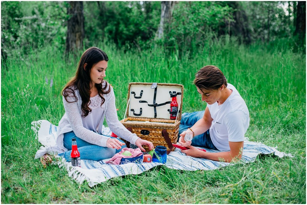 picnic-engagements-ririe-idaho-colorado-wyoming-wedding-photographer_0477.jpg