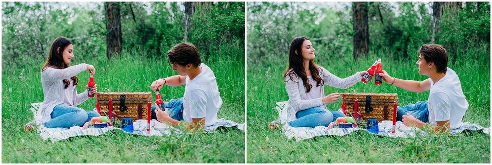 picnic-engagements-ririe-idaho-colorado-wyoming-wedding-photographer_0478.jpg