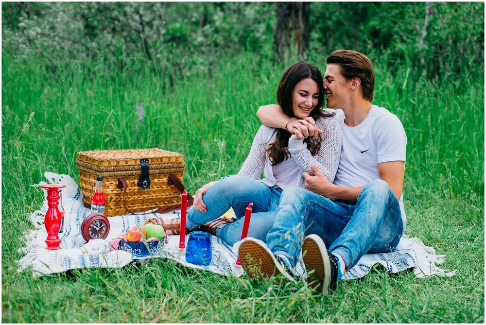 picnic-engagements-ririe-idaho-colorado-wyoming-wedding-photographer_0486.jpg