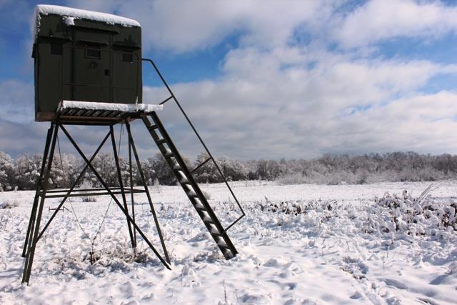 Snow-Days-12-26-12-14.jpg