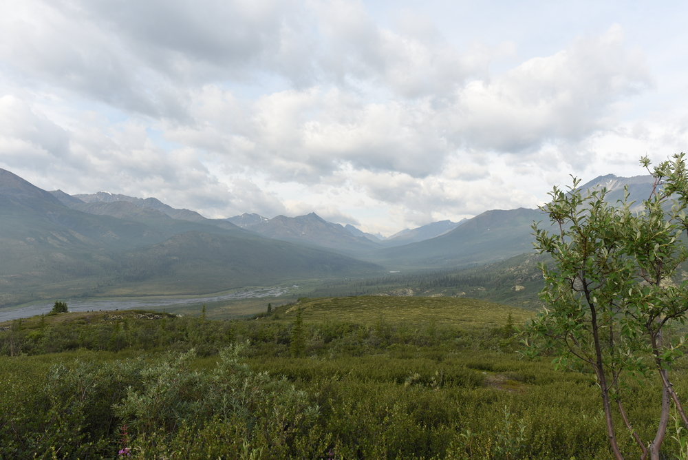 Looking into the valley in Tombstone Territorial Park - Yukon, Canada