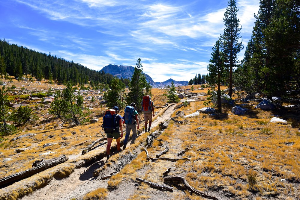 Hiking along the meadows, making our way to Emeric Lake in Yosemite