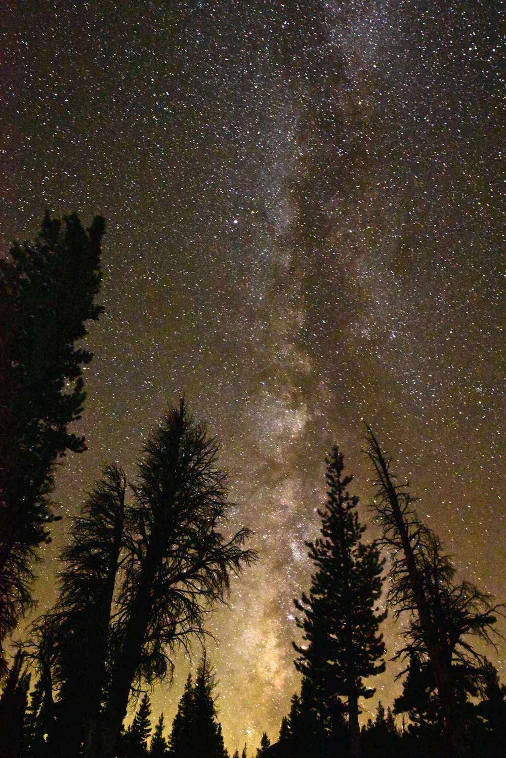 Milky Way shining down over our campsite at Emeric Lake