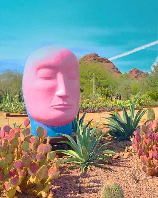 My favorite picture from the Desert Botanical Garden with @jacquelinearlene a month ago 💕