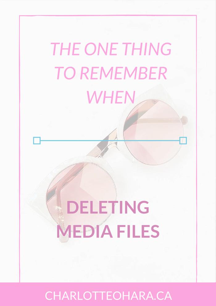 deleting-media-files-1.png