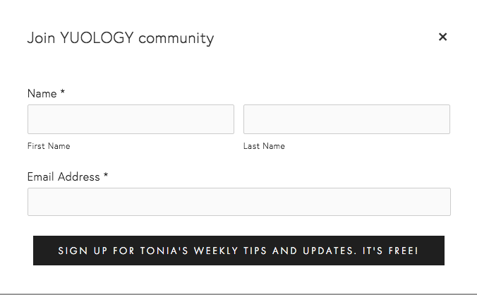 yuology homepage mailchimp email sign up | website reveal for YUOLOGY