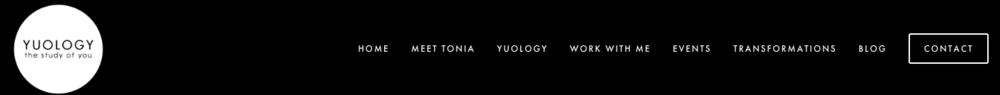 yuology navigation menu | website reveal for yuology
