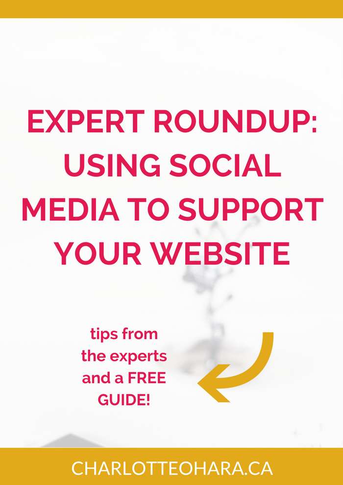 Expert Roundup using social media to support your website