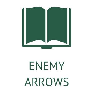 Enemy Arrows Portfolio