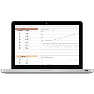 Website Growth Tracker Mockup