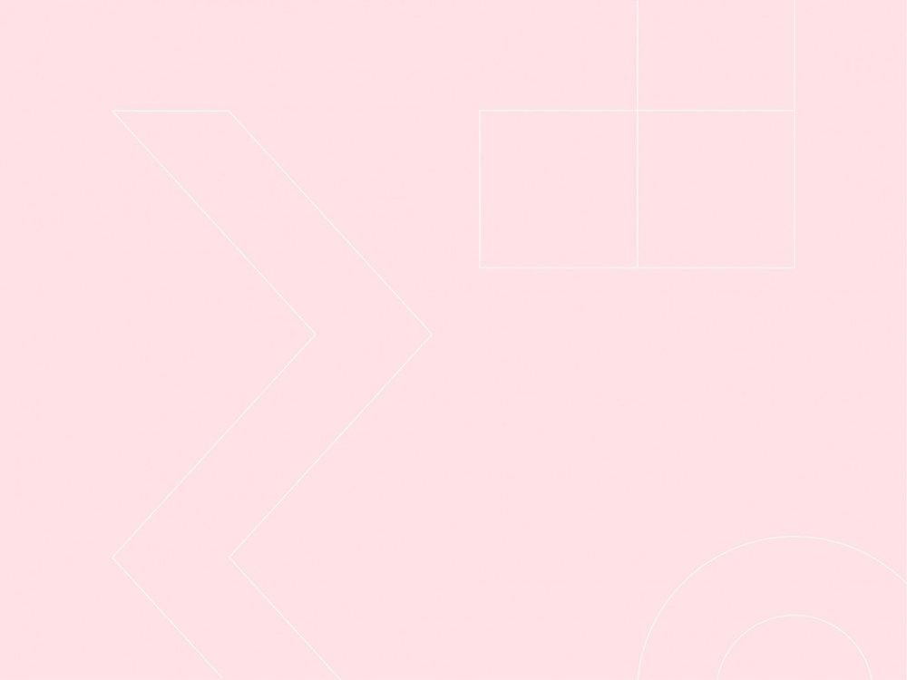 ANS-pink-image.jpg