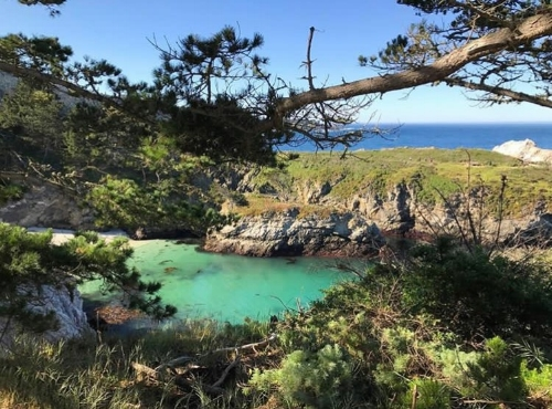 Point Lobos State Natural Reserve hike.