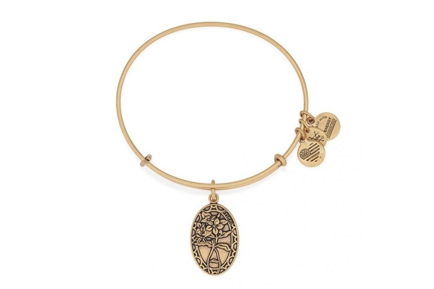 Alex And Ani Friend Charm Bangle - Gold
