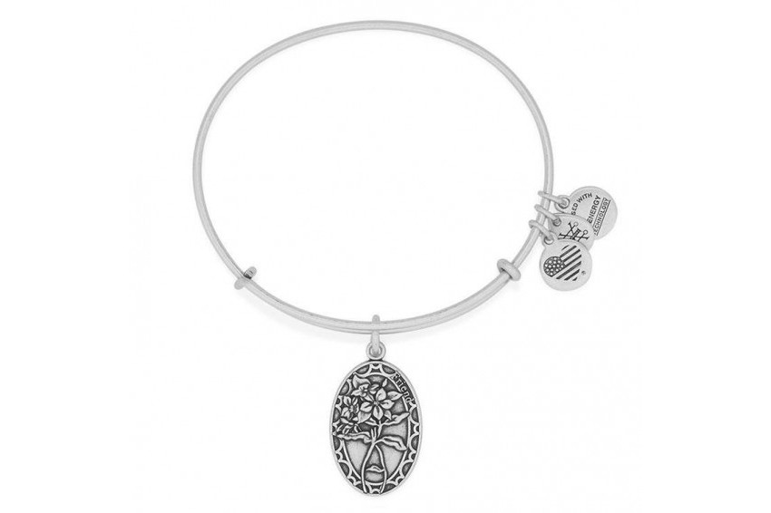 Alex And Ani Because I Love You, Friend Bracelet - Silver