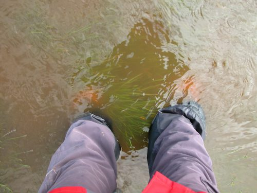 P1: Me up to my shins in Curly Sedge Creek, which was a small rapid in places! This shot was taken after the waters receded a bit.