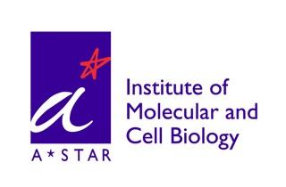 IMCB_Logo.jpeg