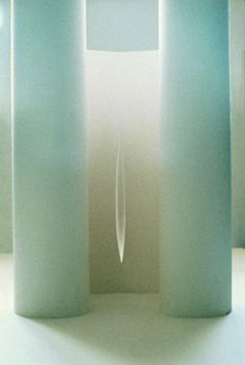 Aili Vint   MAXIMALLY MINIMAL  1994,  3D graphics, papers was exhibited in Osaka Graphic Triennale'94