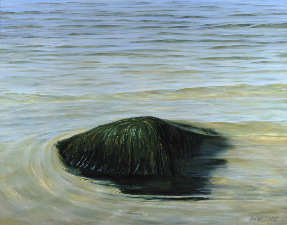 . Stone in coastal water 2000   Oil on canvas 150 x 175 cm    private collection