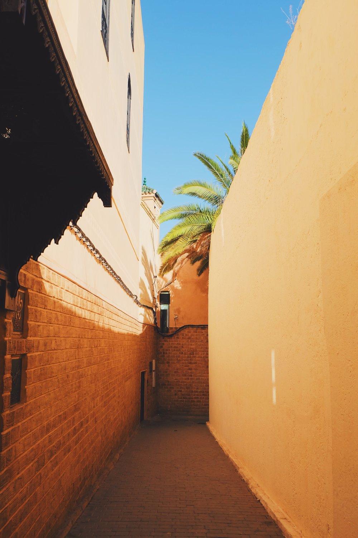 The old medina