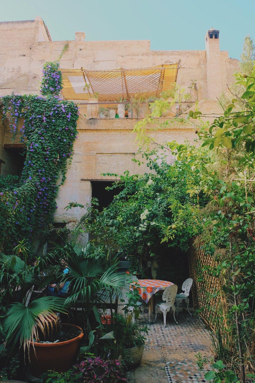 Ruined Garden Cafe