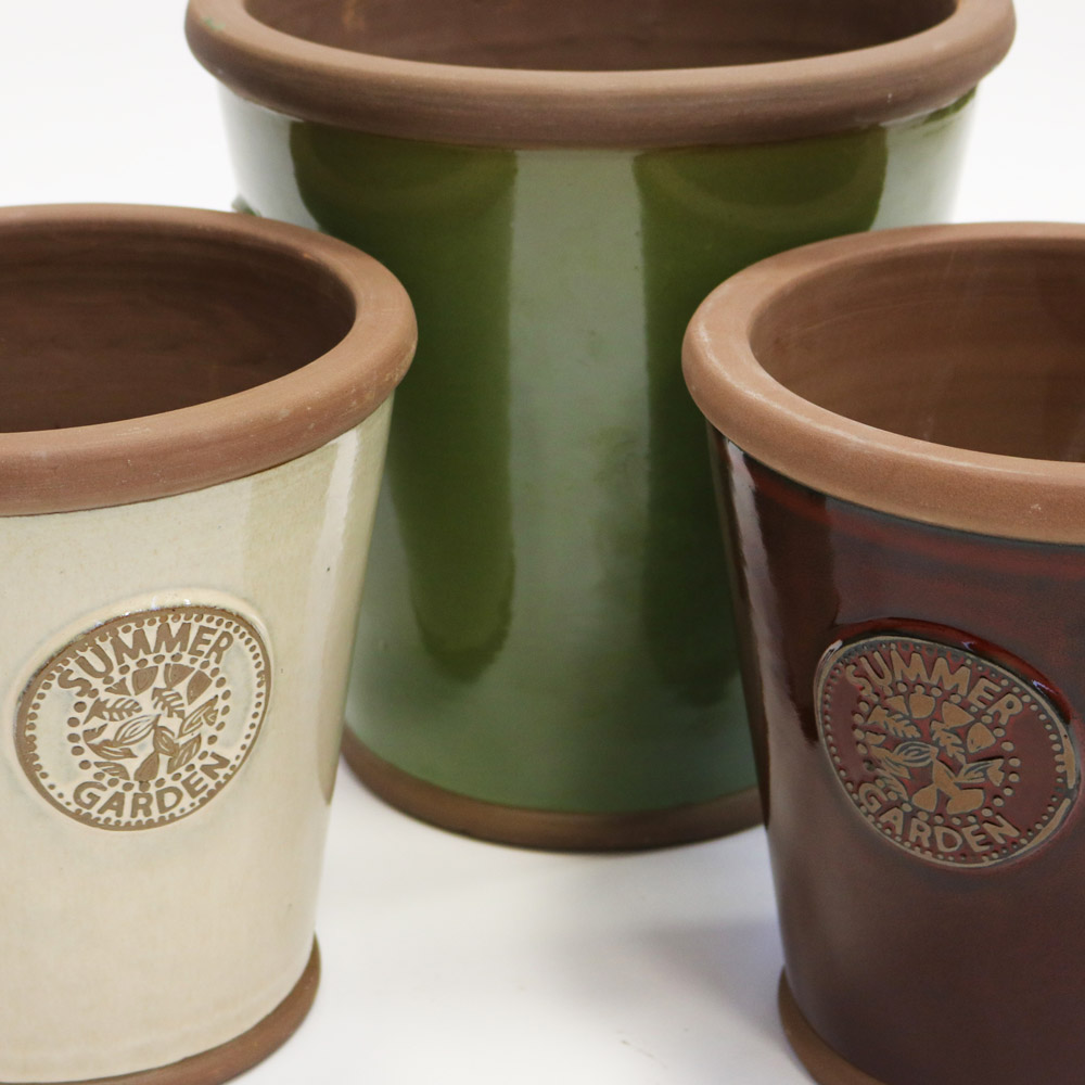 Summer Garden plant pots for Wilko