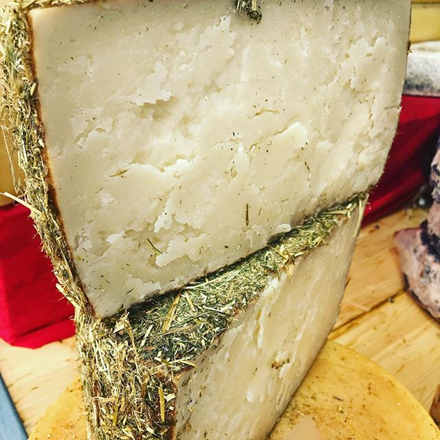 Saturday cheese shopping #cheese #nourishedbyotillie #cheeseboard #swisscheese #cheese #haycheese #luzernmarket