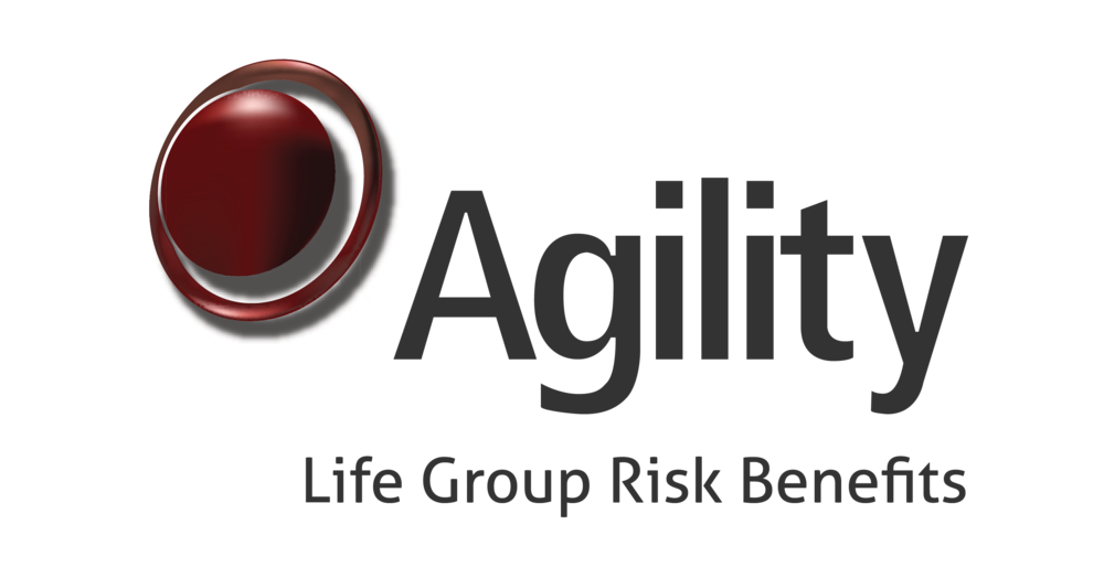 Agility Group Risk Benefits.png
