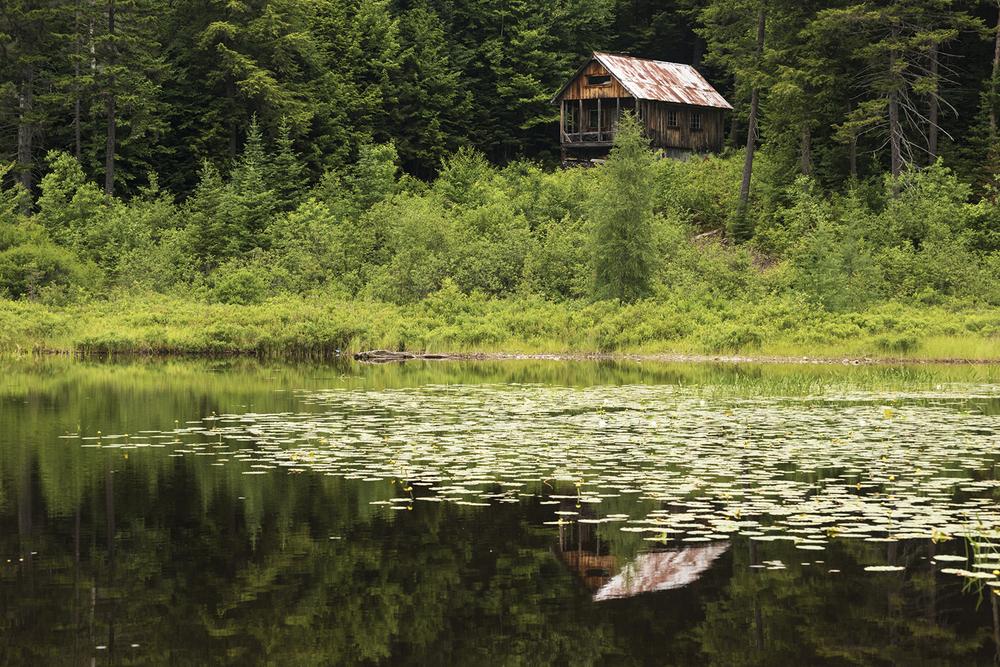 hidden cabin Vermont
