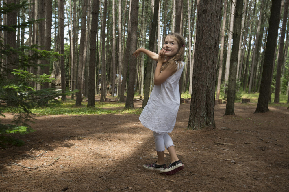 Playing in the Pine Forest.