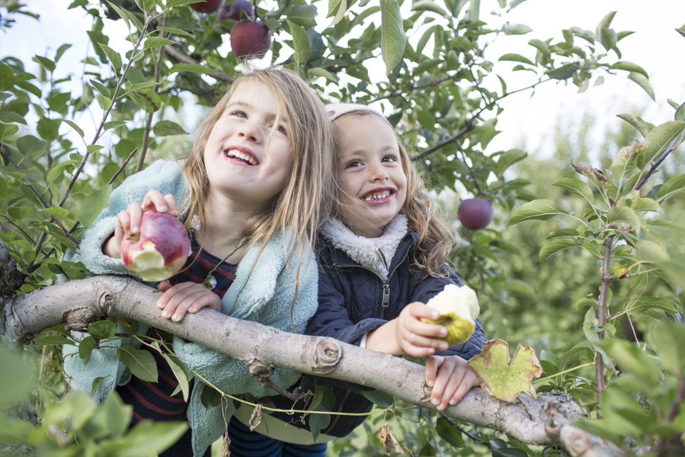 Fun at Shelburne Orchards. Pic. by Dylan Griffin