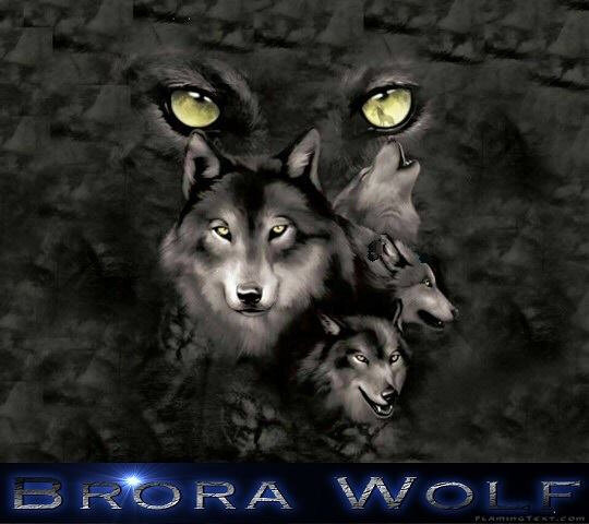 Brora Wolf