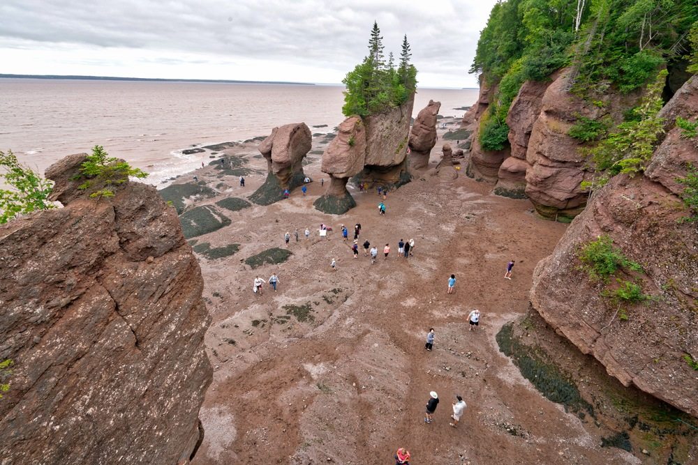 Hopewell Rocks - Low Tide