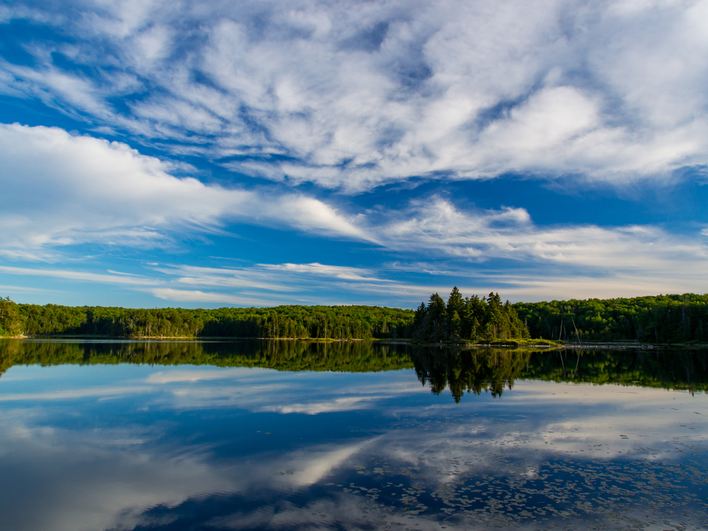 Bourn Pond
