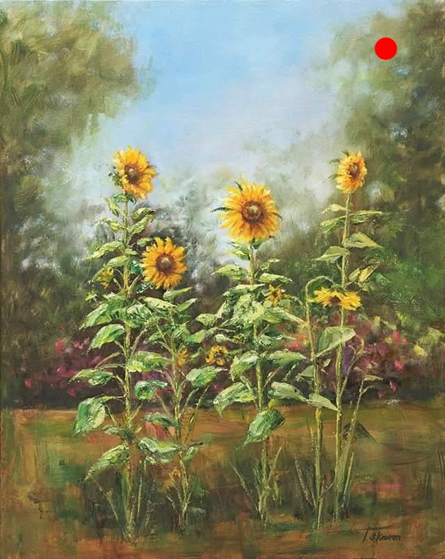 """Copy of Sunflowers - 16"""" x 20"""" x 1.5""""D Oil on canvas in black finish floater frame"""