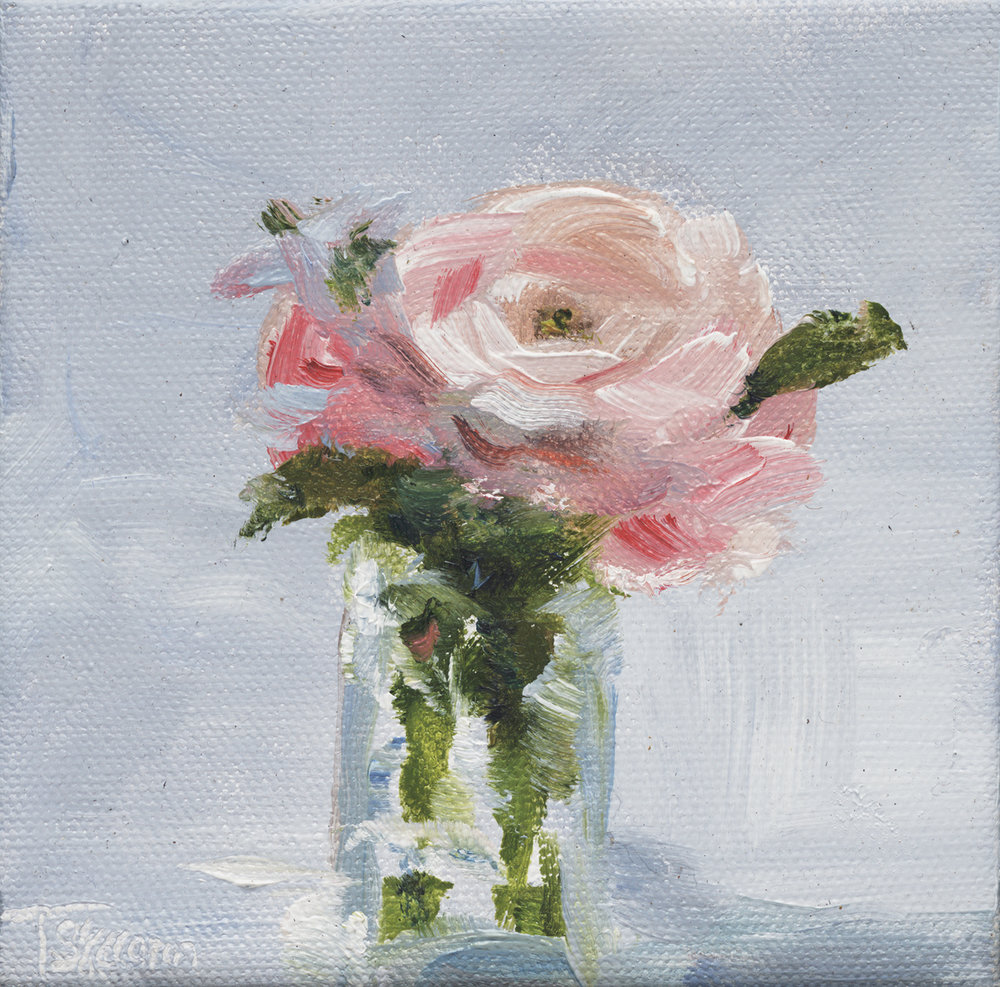 "Pink Ranuncula - 5"" x 5"" x 1.5"" oil on gallery wrapped canvas"