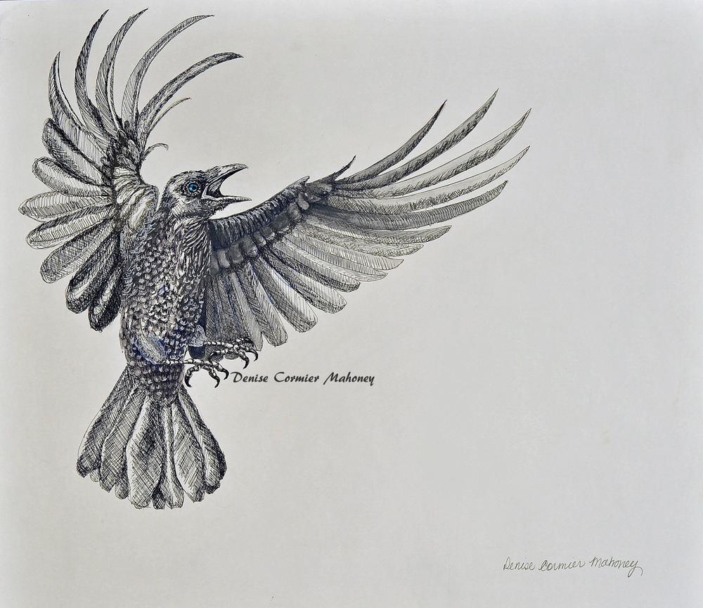Raven (2014)