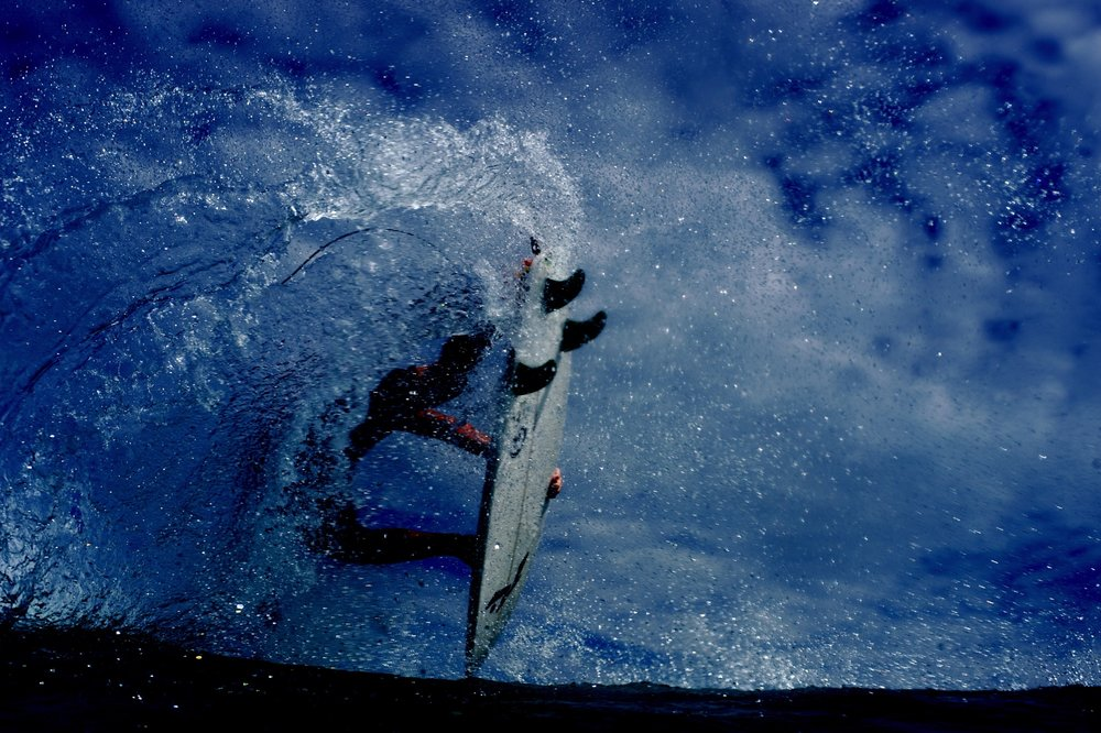 MorganMaassen-Jungle-4b.jpg