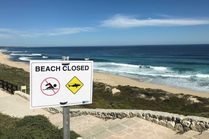 West Australian surf spot Cobblestones was closed after the first shark attack.  (Photo: ABC News - Gian de Poloni)