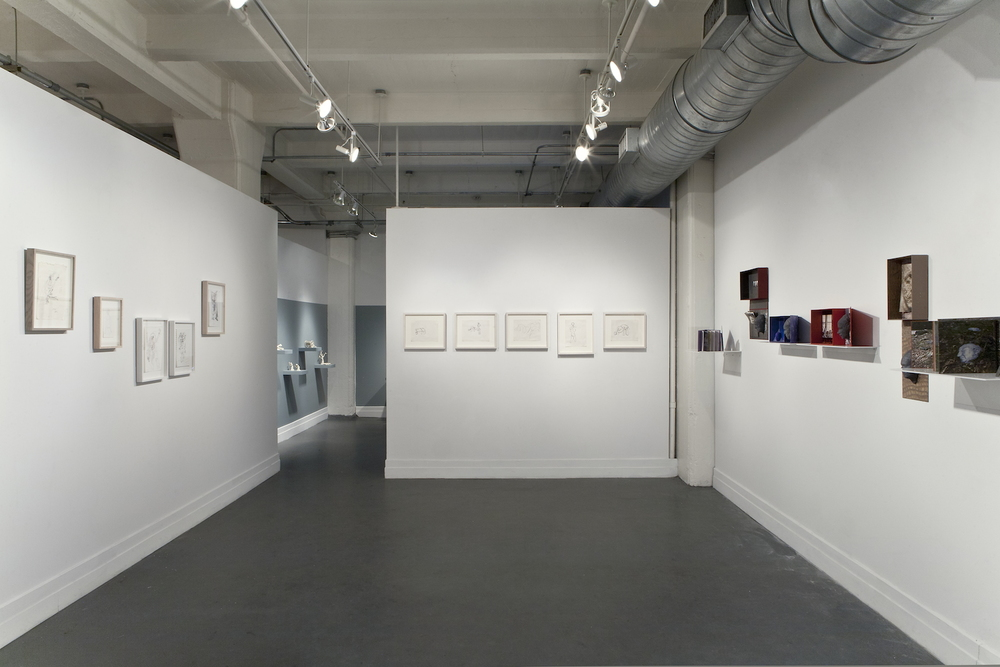 Life Line , 2013 Solo exhibition. Installation view at A.I.R. Gallery